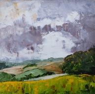 APa16 21 Vineyard Summer Storm