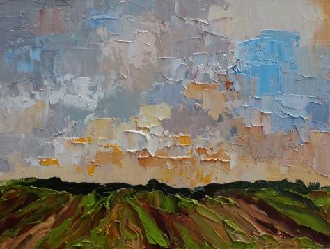 APA17 12 Vineyard storm passing sun setting